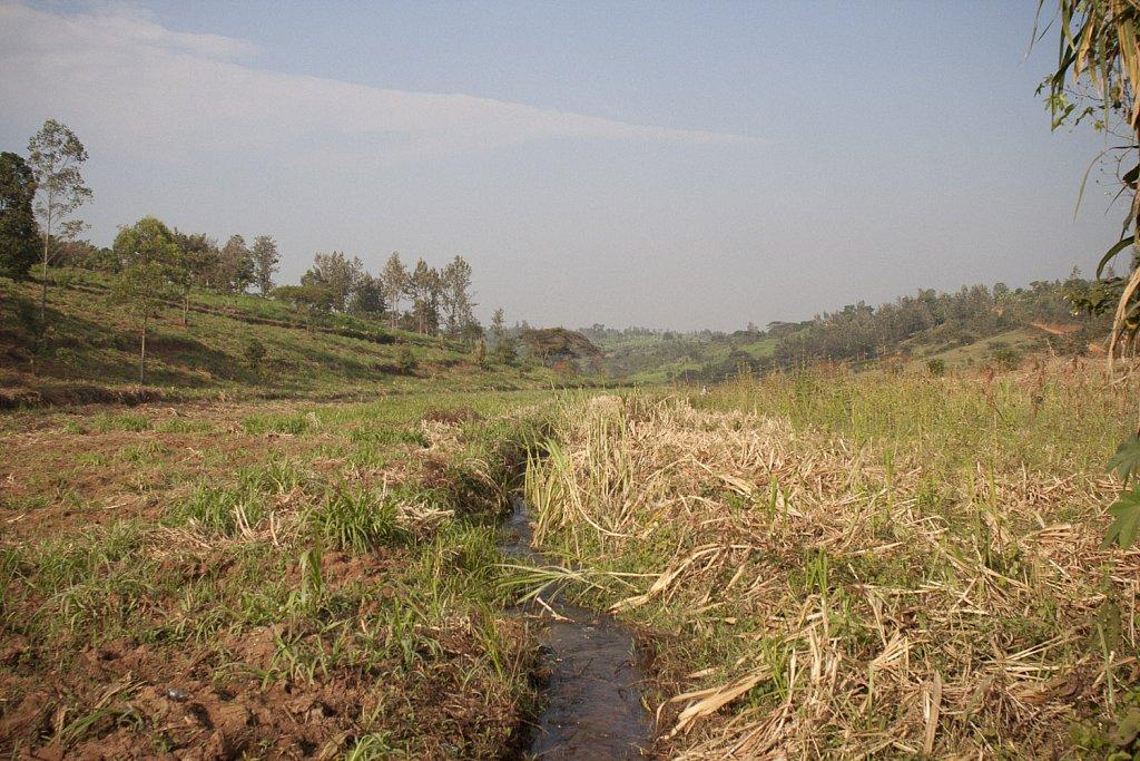 RWANDA-WEB-002.jpg