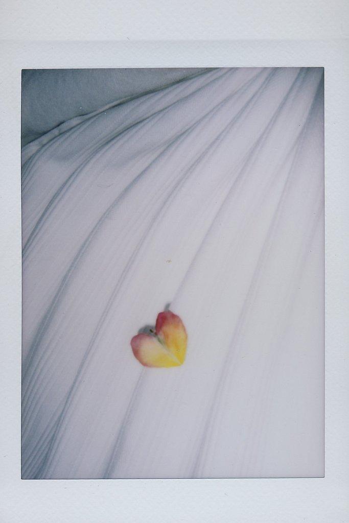 AE-Almost-Like-A-Beautiful-Dream-100.jpg